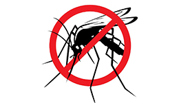 mosquito home page