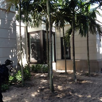 East Palm Garden Before